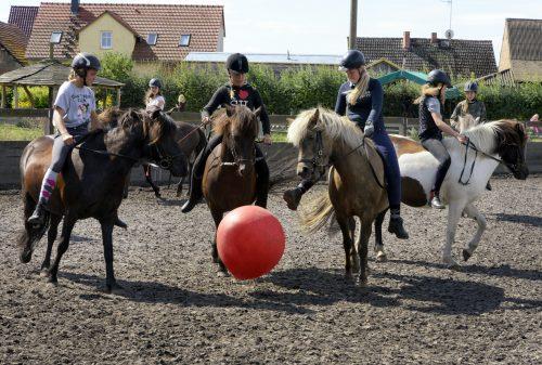 Pferdefußball