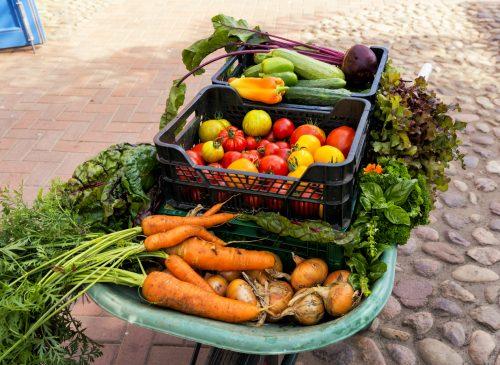 täglich frisches Gemüse