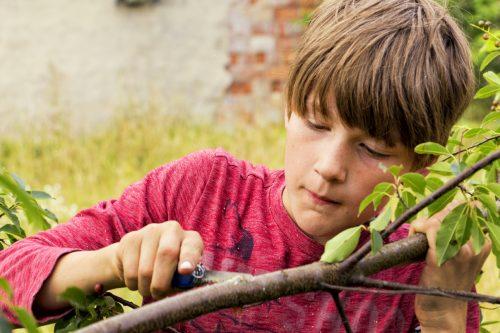 Bogenbau und Zwillenbau im Abenteuercamp Groß Briesen