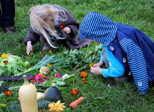 Gemüsemandala legen